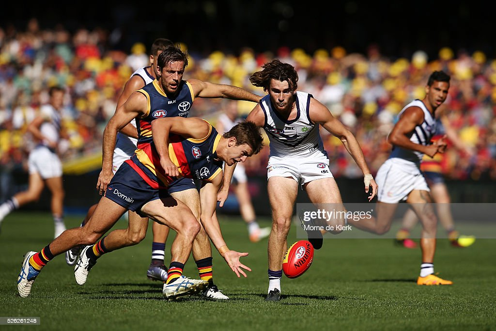 Jarryd Lyons of the Crows wins the ball in front of Connor Blakely of the Dockers during the round six AFL match between the Adelaide Crows and the Fremantle Dockers at Adelaide Oval on April 30, 2016 in Adelaide, Australia.