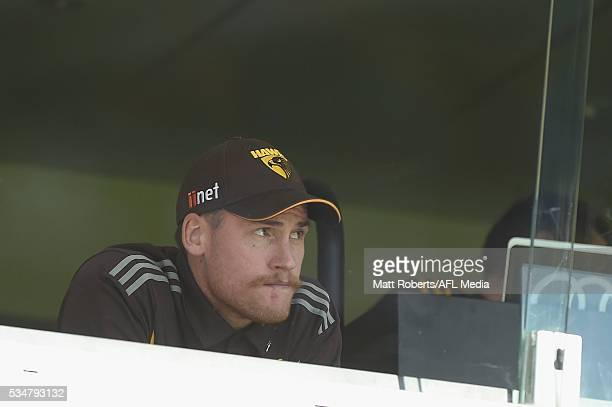 Jarryd Roughead of the Hawks looks on during the round 10 AFL match between the Brisbane Lions and the Hawthorn Hawks at The Gabba on May 28 2016 in...