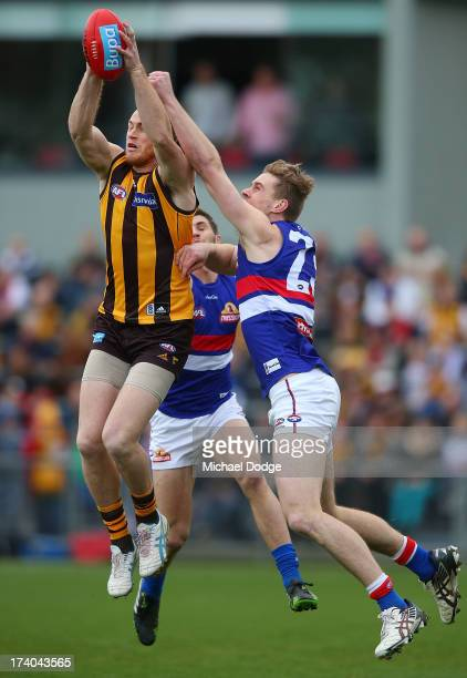 Jarryd Roughead of the Hawks marks the ball against Jordan Roughead of the Bulldogs during the round 17 AFL match between the Hawthorn Hawks and the...