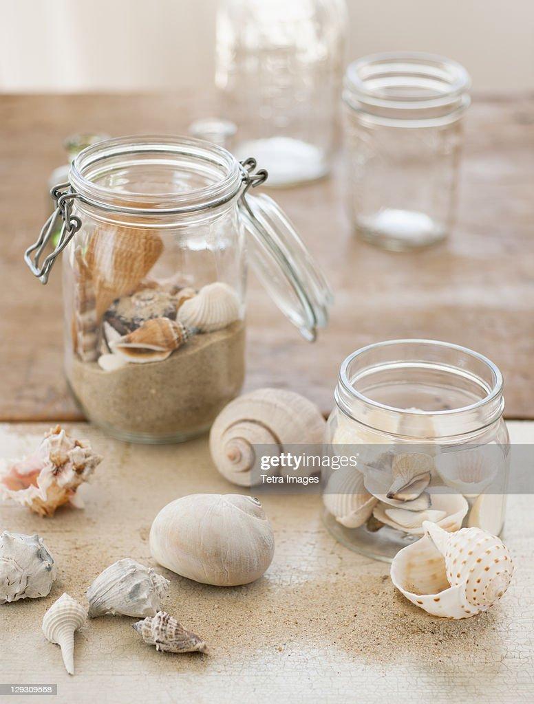 Jars of seashells : Stock Photo