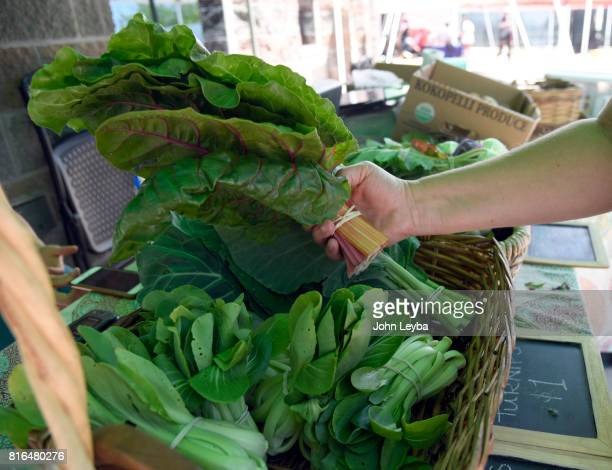 Jasmine Pamphilis looks over the fresh bok choy at the Farmer's market at the DHS Richard T Castro Building on July 17 2017 in Denver The farmfresh...
