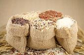 Jasmine rice, Brown rice, Red rice, Mixed rice and Riceberry rice in small hemp sacks.