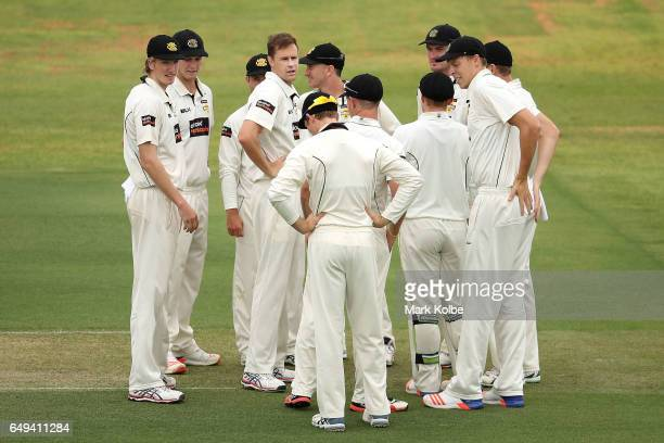 Jason Behrendorff of the Warriors celebrates with his team mates after taking the wicket of Travis Dean of the Bushrangers during the Sheffield...