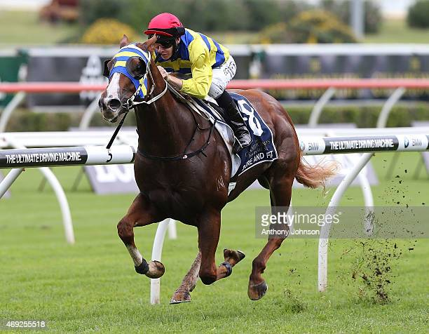Jason Collett rides Sure And Fast to win race 3 The Provincial Championship Final during The Championships at Royal Randwick Racecourse on April 11...