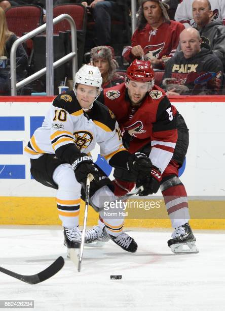 Jason Demers of the Arizona Coyotes battles for a loose puck with Anders Bjork of the Boston Bruins at Gila River Arena on October 14 2017 in...