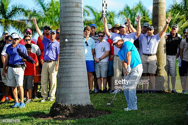 Jason Dufner chips a shot from behind a palm tree on the 13th hole during the final round of the World Golf ChampionshipsCadillac Championship at...