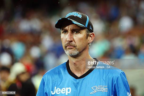 Jason Gillespie coach of the Adelaide Strikers looks on after the Big Bash League Semi Final match between the Adelaide Strikers and the Sydney...