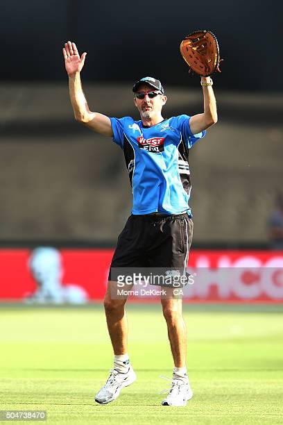 Jason Gillespie of the Adelaide Strikers gestures during the Big Bash League match between the Adelaide Strikers and the Hobart Hurricanes at...