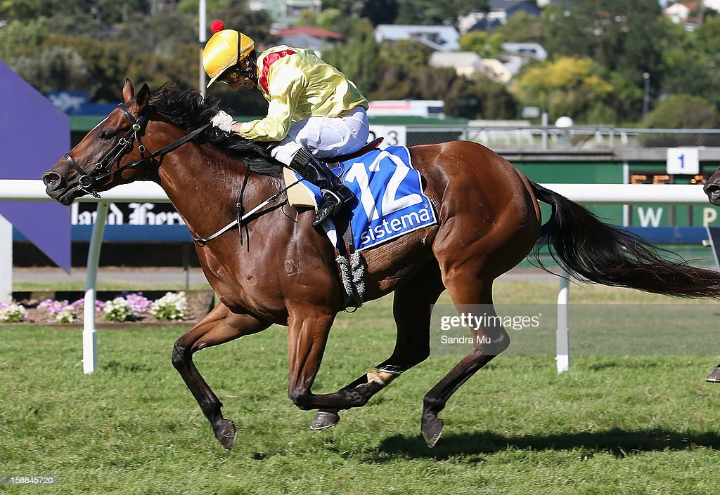 Jason Jago rides Fleur De Lune to win the Sistema Railway Stakes at Ellerslie Racecourse on January 1, 2013 in Auckland, New Zealand.