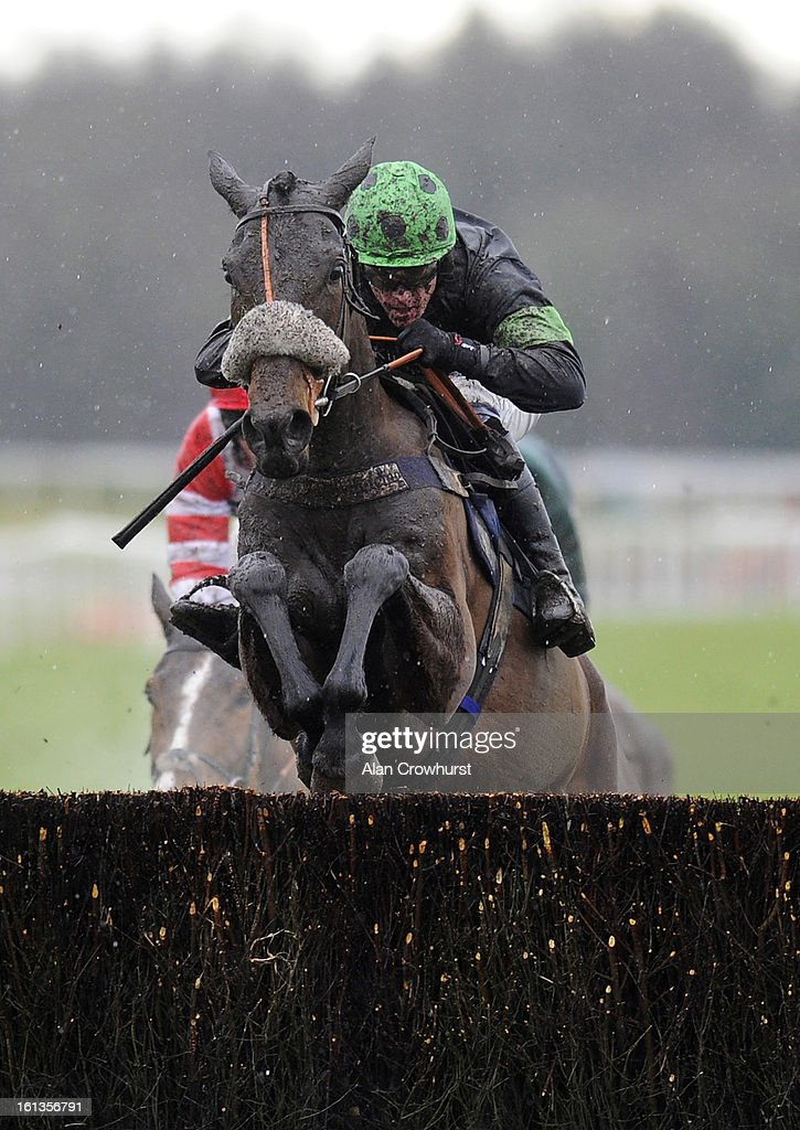<a gi-track='captionPersonalityLinkClicked' href=/galleries/search?phrase=Jason+Maguire&family=editorial&specificpeople=167161 ng-click='$event.stopPropagation()'>Jason Maguire</a> riding Harry Topper clear the last to win The Bathwick Tyres Taunton Graduation Steeple Chase at Exeter racecourse on February 10, 2013 in Exeter, England.
