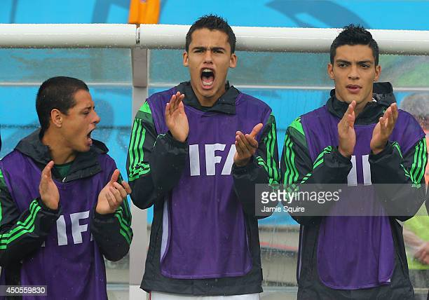 Javier Hernandez Diego Reyes and Raul Jimenez of Mexico cheer from the bench during the 2014 FIFA World Cup Brazil Group A match between Mexico and...