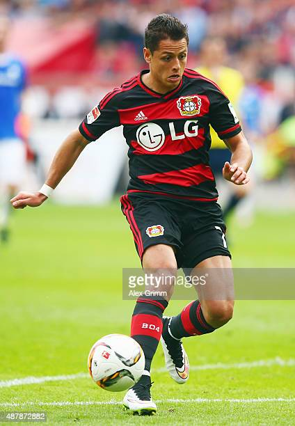 Javier Hernandez of Leverkusen controles the ball during the Bundesliga match between Bayer Leverkusen and SV Darmstadt 98 at BayArena on September...