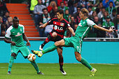 Javier Hernandez of Leverkusen is challenged by Assani Lukimya and Jannik Vestergaard of Bremen during the Bundesliga match between Werder Bremen and...