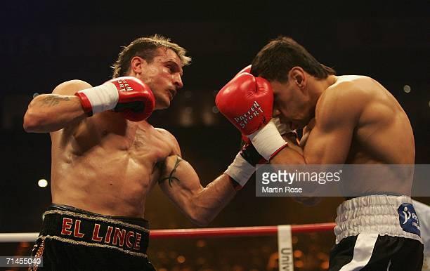 sturm boxing