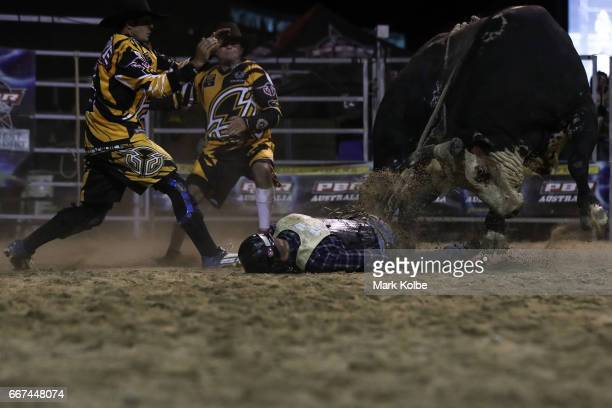 Jay Borghero of Rockhampton lies motionless as he is turned on by Hotter Than Hell 2 after being thrown while competing during the Julia Creek Dirt...