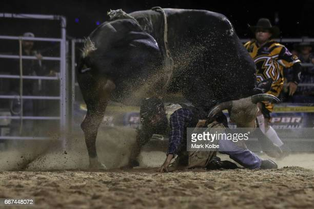 Jay Borghero of Rockhampton tries to evade the bull as he is turned on by Hotter Than Hell 2 after being thrown while competing during the Julia...