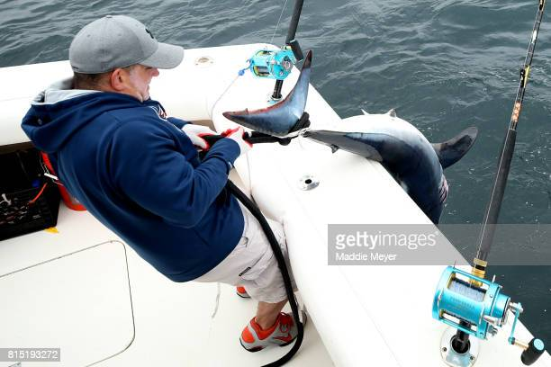 Jay Houser hauls a shortfin mako shark on board the Kalida during the North Atlantic Monster Shark Tournament on July 14 2017 in New Bedford...