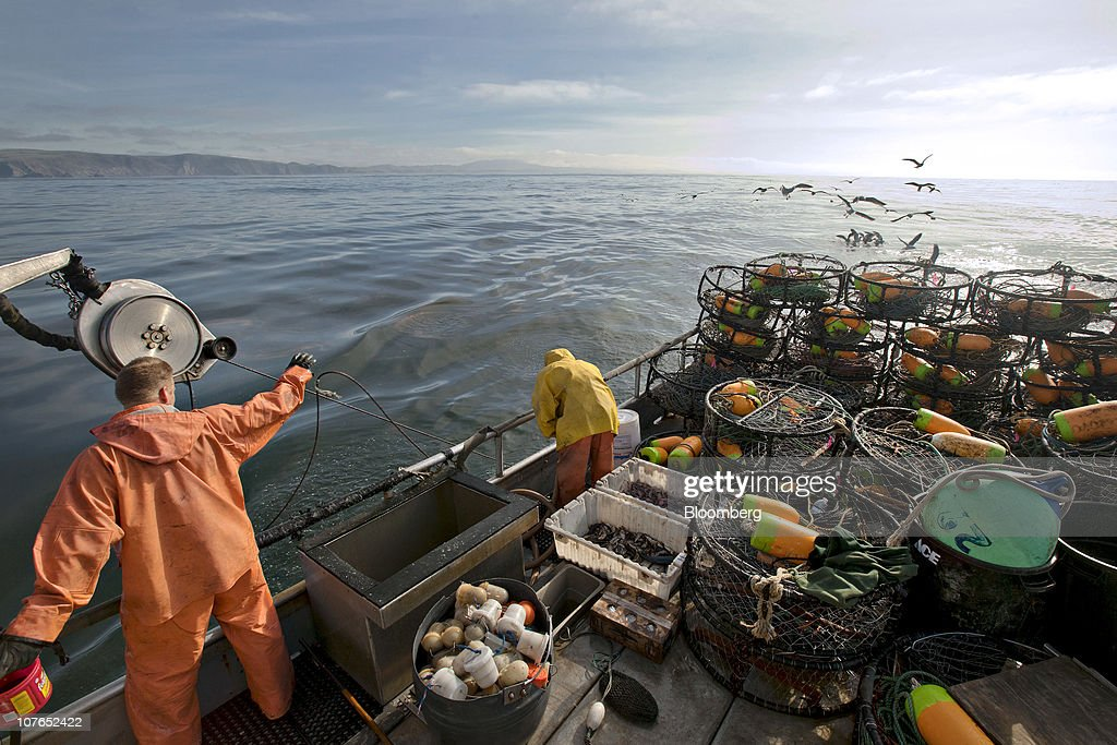 Dungeness crab fishing season gets underway getty images for Ca dept of fish and game