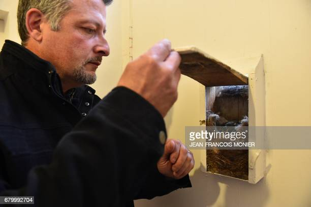 JeanChristophe Rouxel mayor of La LandeChasles a village of 115 inhabitants the smallest commune in Maine et Loire shows five chicks in their nest in...