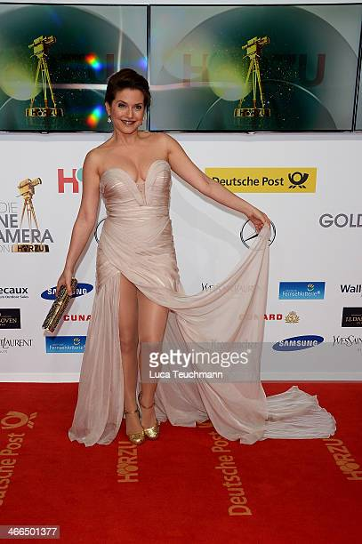 Jeanette Biedermann attends the 49th Golden Camera Awards at Tempelhof Airport on February 1 2014 in Berlin Germany