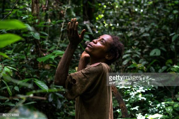 TOPSHOT Jeanne Bi a member of the Bagyeli Pygmy community gives thanks to spirits after finding honey in a felled tree on May 26 2017 in the Kribi...