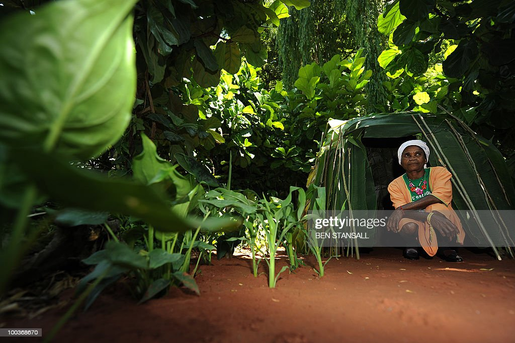 Jeanne Noua, from Cameroon, is pictured in the Green and Black's Rainforest Garden at the Chelsea Flower Show in London, on May 24, 2010. A group of Cameroonian pygmies have recreated their native West African rainforest at the Flower Show this year in order to illustrate how they are now forced to cultivate their own crops due to the effects of deforestation and illegal hunting.