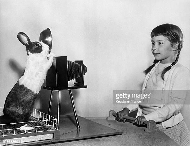 Jeannot Lapin est tres serieux car il s'agit de ne pas rater la photo de sa petite maitresse autrement adieu la belle carotte qu'elle lui a promise...
