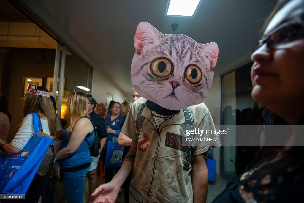 Jean-Pierre Giagnoli wears a cat mask at CatConLA, a convention to show cat-related products and ideas in art, design, and pop culture, on June 25, 2016 in Los Angeles, California. / AFP / DAVID
