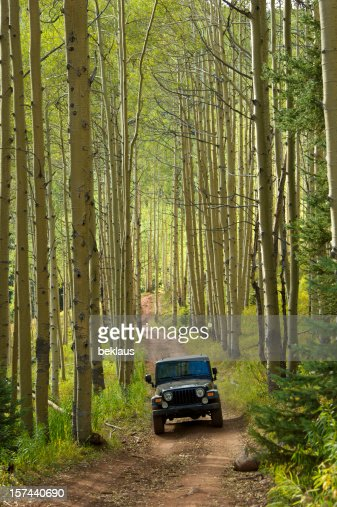 Jeep in the Aspens