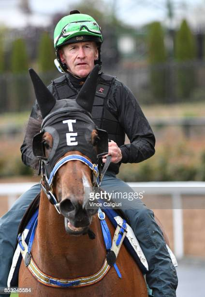 Jeff Lloyd riding Houtzen after a trackwork Session at Moonee Valley Racecourse on September 25 2017 in Melbourne Australia