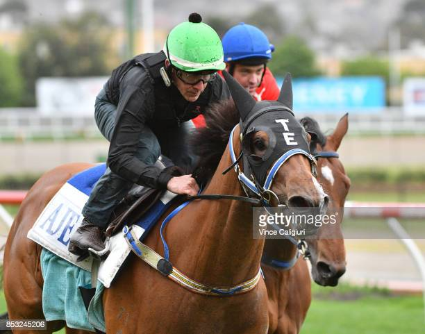 Jeff Lloyd riding Houtzen during trackwork Session at Moonee Valley Racecourse on September 25 2017 in Melbourne Australia