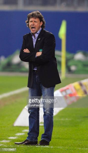 Jeff Saibene coach of FC St Gallen looks on during the Swiss Super League match between FC St Gallen and Grasshopper Club held on May 29 2013 at the...