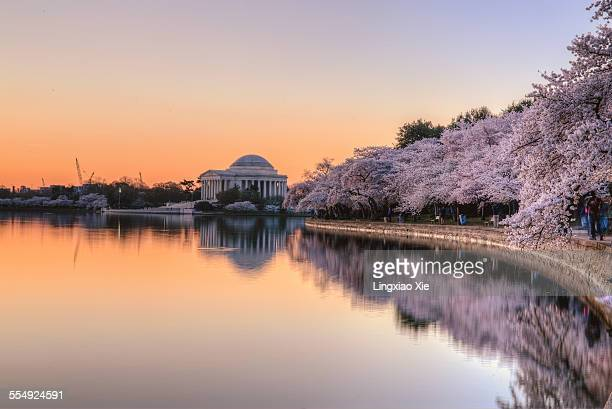Jefferson Memorial sunrise