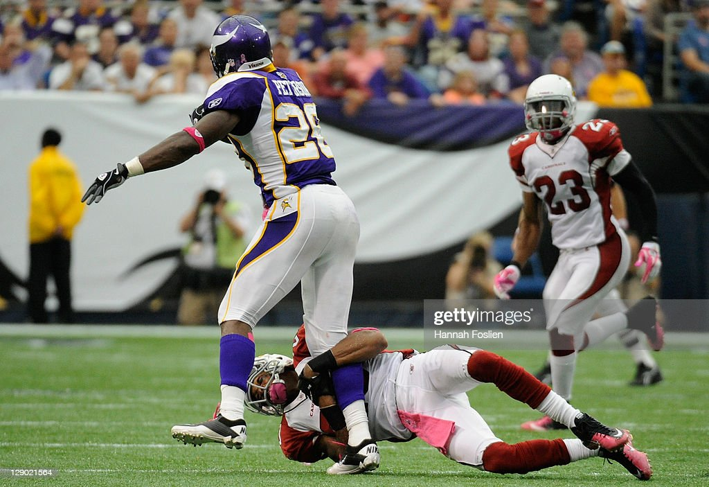 A.J. Jefferson #20 of the Arizona Cardinals tackles Adrian Peterson #28 of the Minnesota Vikings in the fourth quarter on October 9, 2011 at Hubert H. Humphrey Metrodome in Minneapolis, Minnesota. The Vikings defeated the Cardinals 34-10.
