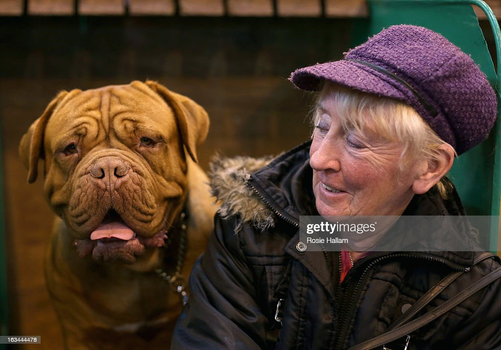 Jennifer Lomas with Isla, a Dogue de Bordeaux during the final day at Crufts Dog Show on March 10, 2013 in Birmingham, England. During this year's four-day competition over 22,000 dogs and their owners will vie for a variety of accolades but ultimately seeking the coveted 'Best In Show'.
