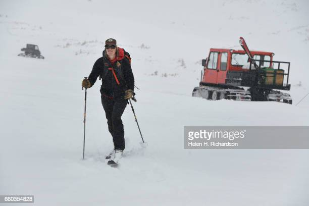 Jennifer Morse a climate technician at the Mountain Research Station in Roosevelt National Forest skis towards the 2nd of 3 research stations to do...