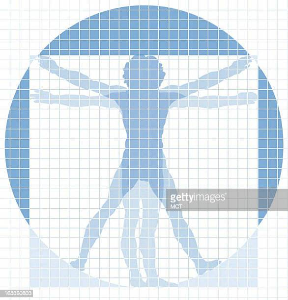 Jennifer Pritchard color illustration of Vitruvian Man in grid for health screening