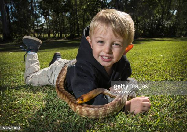 Jensen Harrison an Australian boy from Queensland plays with a Woma Python Jensen has grown up handling nonvenomous snakes as his father is a snake...