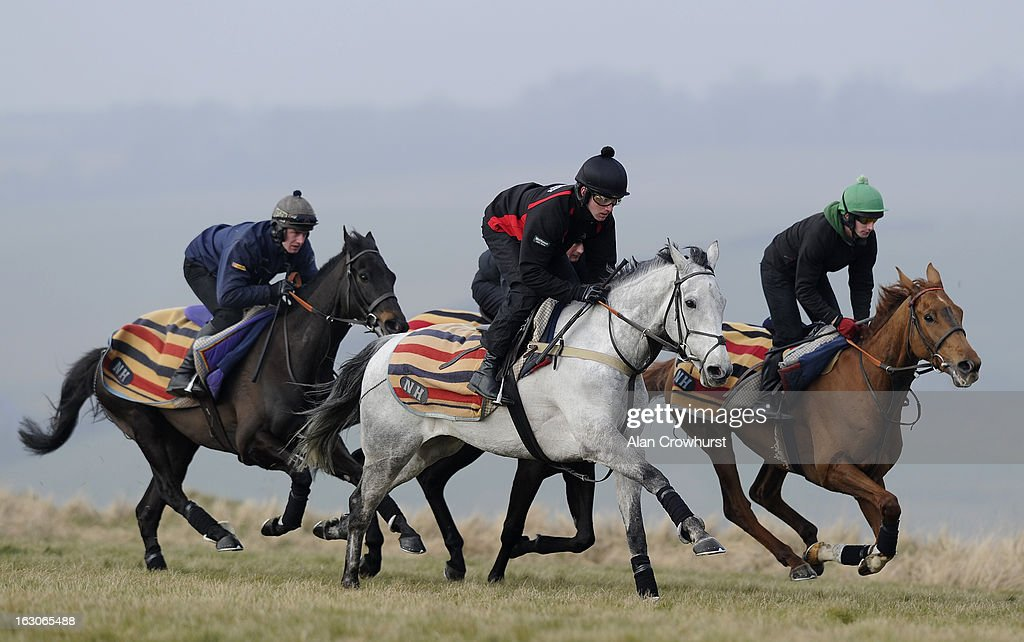 Jeremiah McGrath riding Simonsig (C) make their way along the gallop on Lambourn gallops on March 04, 2013 in Lambourn, England.
