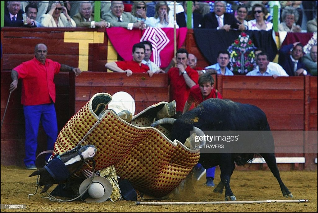Jerez the city where a Domecq prince reigns in Spain in May 2003 Bull passing the picador