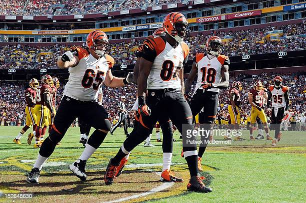 Jermaine Gresham of the Cincinnati Bengals celebrates after scoring a touchdown on a 6yard pass from Andy Dalton in the second half against the...