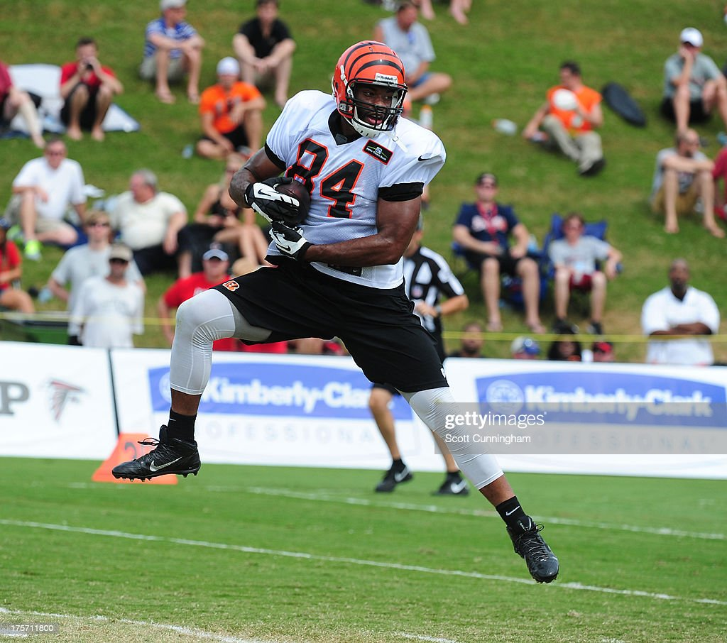 <a gi-track='captionPersonalityLinkClicked' href=/galleries/search?phrase=Jermaine+Gresham&family=editorial&specificpeople=4023341 ng-click='$event.stopPropagation()'>Jermaine Gresham</a> #84 of the Cincinnati Bengals makes a catch during practice against the Atlanta Falcons at the Atlanta Falcons Training Complex on August 6 2013 in Flowery Branch, Georgia.