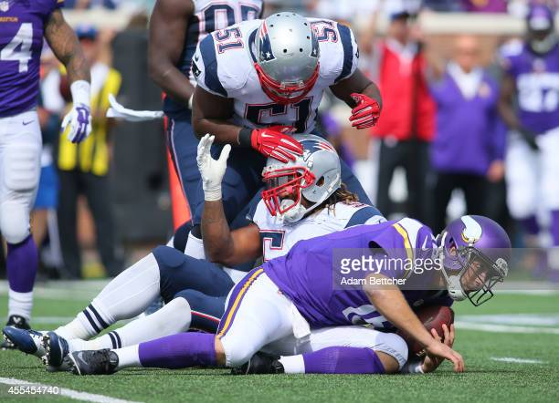Jerod Mayo and Dont'a Hightower of the New England Patriots celebrate a sack of Matt Cassel of the Minnesota Vikings at TCF Bank Stadium on September...