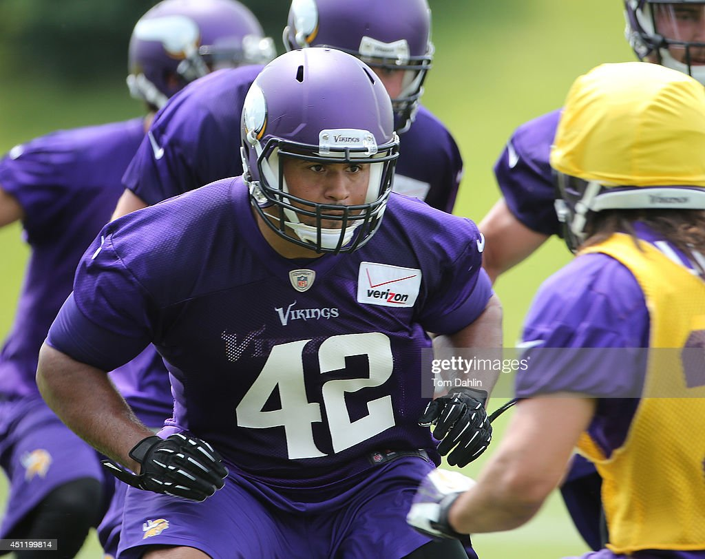 <a gi-track='captionPersonalityLinkClicked' href=/galleries/search?phrase=Jerome+Felton&family=editorial&specificpeople=5085117 ng-click='$event.stopPropagation()'>Jerome Felton</a> #42 of the Minnesota Vikings works out during Minicamp sessions at the Winter Park training facility on June 18, 2014 in Eden Prairie, Minnesota.