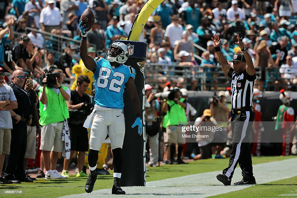 Jerricho Cotchery of the Carolina Panthers celebrates a touchdown during a game against the Jacksonville Jaguars at EverBank Field on September 13...