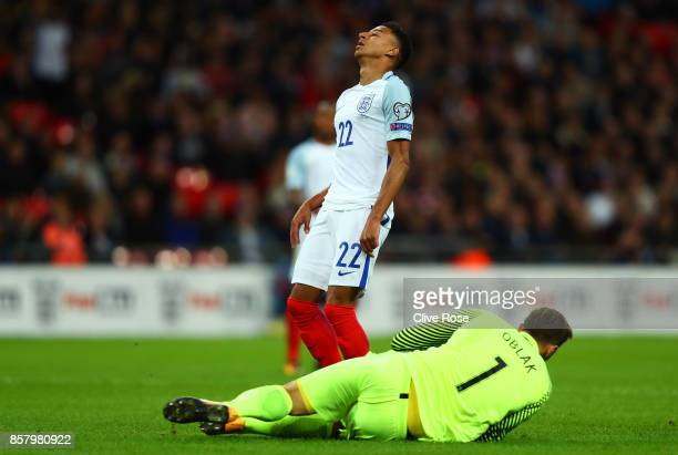 Jesse Lingard of England reacts as Jan Oblak of Slovenia grabs the ball during the FIFA 2018 World Cup Group F Qualifier between England and Slovenia...