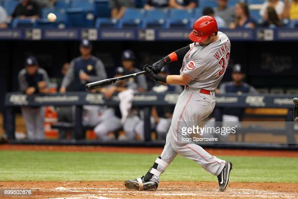 Jesse Winker of the Reds at bat during the MLB regular season game between the Cincinnati Reds and Tampa Bay Rays on June 21 at Tropicana Field in St...