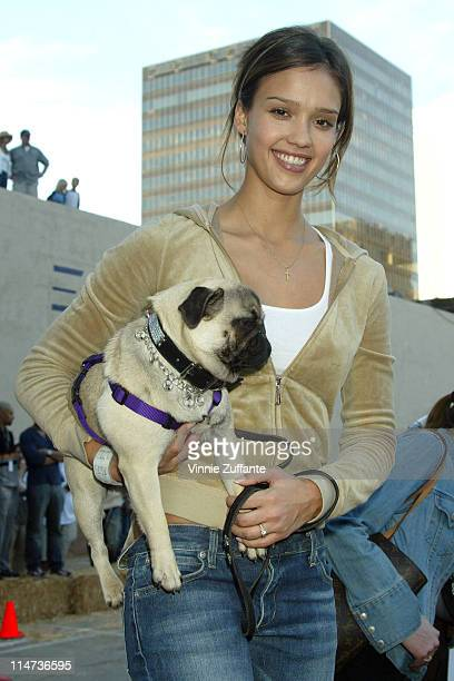 Jessica Alba and her pet pug attending the 2003 Cadillac Super Bowl Grand Prix at Ace Parking in San Diego CA 01/25/03