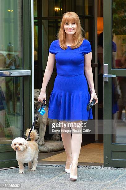 Jessica Chastain is seen walking her dog in downtown Manhattan on August 27 2014 in New York City