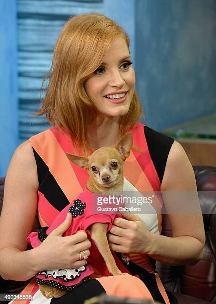 Jessica Chastain on the set Of Univisions 'Despierta America' with the show's dog Honey Berry to promote the film 'Crimson Peak'at Univision Studios...